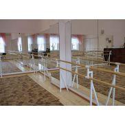купить зеркало танцевальный зал